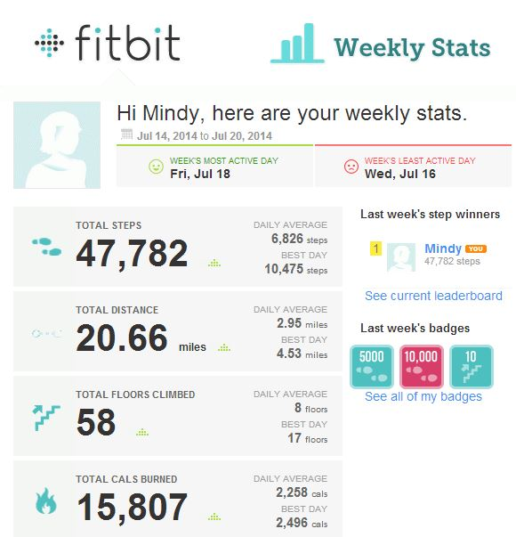 Fitbit072314